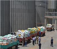 توريد 87 ألف طن من القمح لشون وصوامع البحيرة