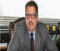 «الأعلى للإعلام» يوجه طلبًا لـ«هيئة الاستثمار» بشأن الشركات المنشأة للمواقع الإلكترونية