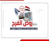إنفوجراف| محور «روض الفرج»..أول كوبري مصري يدخل موسوعة «جينيس»