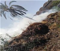صور| السيطرة على حريق نشب خلف المنطقة الصناعية بكفر الدوار
