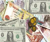 توقعات بمزيد من الهبوط للدولار أمام الجنيه خلال الفترة المقبلة