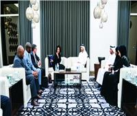 مباحثات في العلاقات الثنائية بين وزراء خارجية الإمارات وجنوب أفريقيا