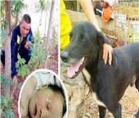 كلب ينقذ رضيعا دفنته أمه حيا