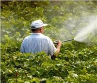 الرقابة على أسواق المبيدات يحمي المحاصيل الزراعية والمواطنين