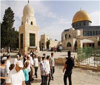 مستوطنون يقتحمون المسجد الأقصى بحراسة مشددة من الاحتلال الإسرائيلي