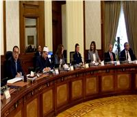 الوزراء يستعرض عروض المقدمة لـ«مشروع مونوريل العاصمة الإدارية و6 أكتوبر»