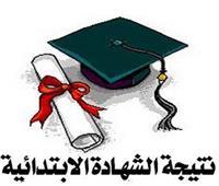 «بوابة أخبار اليوم» تنشر نتيجة المرحلة الابتدائية بمحافظة القاهرة