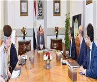 السيسي يستعرض مع وزيري الصحة والاتصالات التعاون في مجال الصحة مع أفريقيا