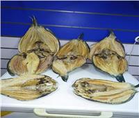 تعرف على قصة «السمك الناشف».. أشهر أكلة في العيد بالبحر الأحمر