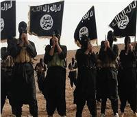 اعتقال 15 داعشيا في عملية إنزال جوي للتحالف بسوريا