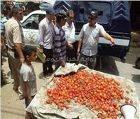 ضبط وإعدام لحوم وأسماك غير صالحة للاستهلاك بسوهاج