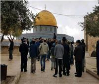 """عشرات المستوطنين يقتحمون المسجد الأقصى بحجة """"عيد نزول التوراة"""""""