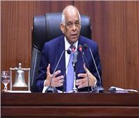 «عبدالعال»:سيأتي يوم ننهي فيه علاقة الحكومة بزيادة المعاشات