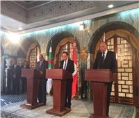 وزراء خارجية مصر وتونس والجزائر يؤكدون رفضهم التام للتدخل الخارجي في الشأن الليبي