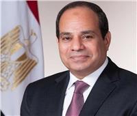 الرئيس السيسي يصدر قرارًا جمهوريًا يرتبط بـ«حقوق الإنسان»