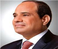 «السيسي» للمستشار صالح: دعم مصر للجيش الليبي لن يتوقف