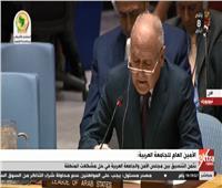 بث مباشر| كلمة أحمد أبو الغيط أمام مجلس الأمن الدولي بنيويورك