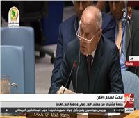 فيديو| أبو الغيط: استهداف ناقلات النفط بمياه الخليج العربى «لعب بالنار»
