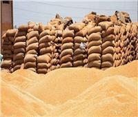 محافظ الغربية: توريد 101% من مستهدف القمح منذ بدء الموسم