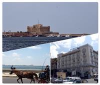 مدن «الكان» تتزين| المزارات السياحية بالإسكندرية تتجمل لجمهور القارة السمراء