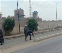 رئيس حي أول المحلة اكتشف مرضعامل النظافة «فكنس الشارع بنفسه»