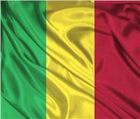 رئيس بلدية: مسلحون يقتلون 41 شخصًا في وسط مالي في هجمات على قريتين