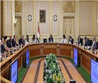 صور..قرار عاجل من الحكومة بشأن مناطق «الطيبي»و«روضة السيدة2»والمتحف المصري الكبير»