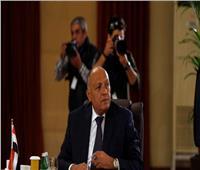 وزير الخارجية مهاجمًا أردوغان: حاقد على مصر