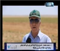 فيديو|رئيس «البحوث الزراعية» يكشف عن أضخم مزرعة بحثية بالمنيا