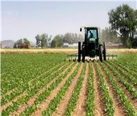 14 توصية مصرية لحل معوقات الحاصلات الزراعية بين دول الاتحاد الإفريقي