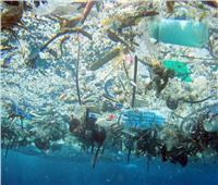 «المايكروبلاستيك».. أجزاء بسيطة تهدد حياتنا