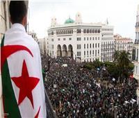 من النفوذ إلى السقوط| مسؤولي الجزائر «قيد التحقيق»