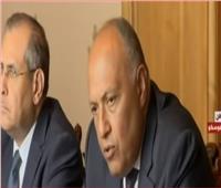 فيديو| وزير الخارجية: المباحثات الروسية المصرية تناولت القضايا الشائكة في الشرق الأوسط