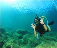 غرفة الغوص: المراكز تخضع لإشراف «السياحة».. ونطبق أعلى معايير السلامة