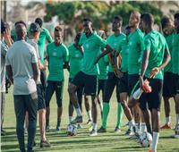 أمم إفريقيا 2019| نيجيريا تستعد لمواجهة غينيا بعد حل «أزمة المكافآت»
