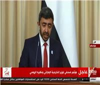 فيديو| وزير الخارجية الإماراتى: نتمنى نهاية الحرب باليمن خلال العام الحالى