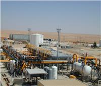 مصر مركز إقليمي لتجارة الطاقة بمشروعات البنية الأساسية وتخزين الوقود