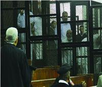 ثورة 30 يونيو| الدولة انتصرت للقانون في محاكمة قادة الإرهاب