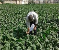 الحجر الزراعي يقدم كشف حساب عن إنجازاته بمناسبة ذكرى 30 يونيو