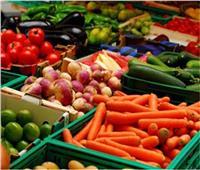 الزراعة: فتح 20 سوقا جديدة أمام الصادرات خلال عام