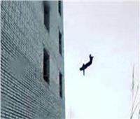 مصرع فتاة من الطابق الـ13 بالإسكندرية لهذا السبب