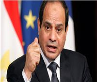 السيسي: ثورة 30 يونيو صيحة تعبير عن أقوى الثوابت المصرية