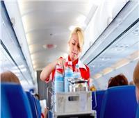طائرة أبو عمار..هل تُقدم «الشاورما» للمُسافرين؟
