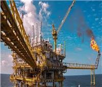قصة نجح مشروعات البتروكيماويات من التكرير إلى التصنيع