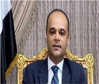 نادر سعد: منطقة لوجستية بالأردن لزيادة حجم التجارة مع مصر