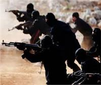 مقتل 11 متشددًا في هجوم قرب حدود تنزانيا