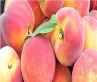 «الزراعة» تصدر تقريراً بموقف الخوخ المصري قبل تصديره للخارج