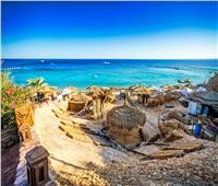 مجلس تنشيط السياحة يعتمد الضوابط الجديدة للحملات المشتركة