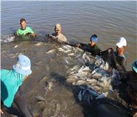 تفاصيل| الزراعة تعلن إنجازات الهيئة العامة للثروة السمكية خلال عام