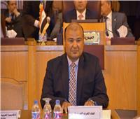 حنفي: قناة السويس والبحر الأحمر والمنطقة العربية شرايين حيوية في تعزيز التجارة الدوليّة